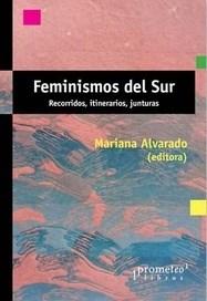 Libro Feminismos Del Sur .Recorridos , Itinerarios ,Junturas